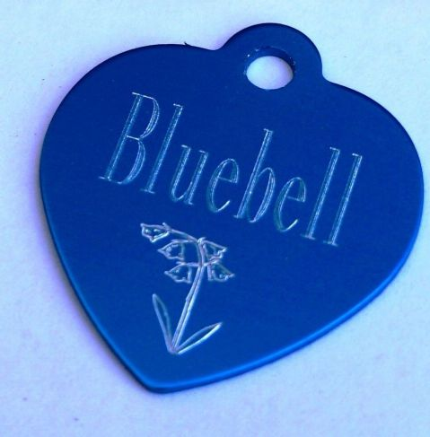 BLUEBELL DOG NAME TAG 35MM HEART TAG PERSONALISED WITH YOUR DETAILS ON REVERSE